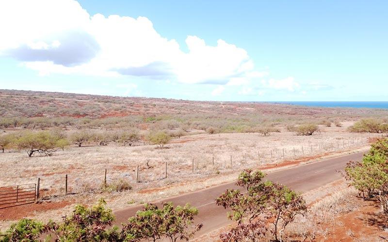 Lot 91 Pa Loa Loop, Maunaloa, Hawaii 96770, ,Land,For Sale,Pa Loa Loop,1081