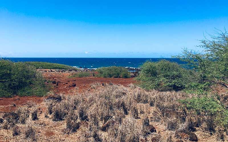4260 Pohakuloa Road, Maunaloa, Hawaii 96770, ,Land,For Sale,Pohakuloa Road,1034