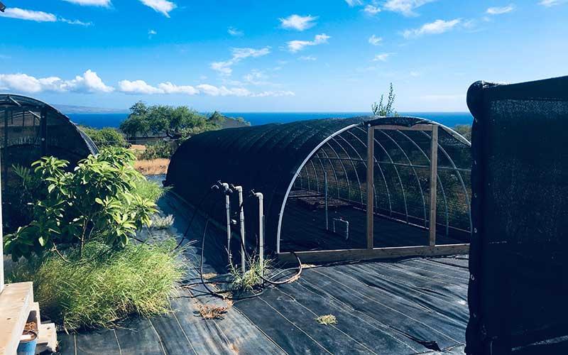 399 Ulua Road, Kaunakakai, Hawaii 96748, ,Land,For Sale,Ulua Road,1038