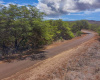 129 Pa Loa Loop, Maunaloa, Hawaii 96770, ,Land,For Sale,Pa Loa Loop,1045